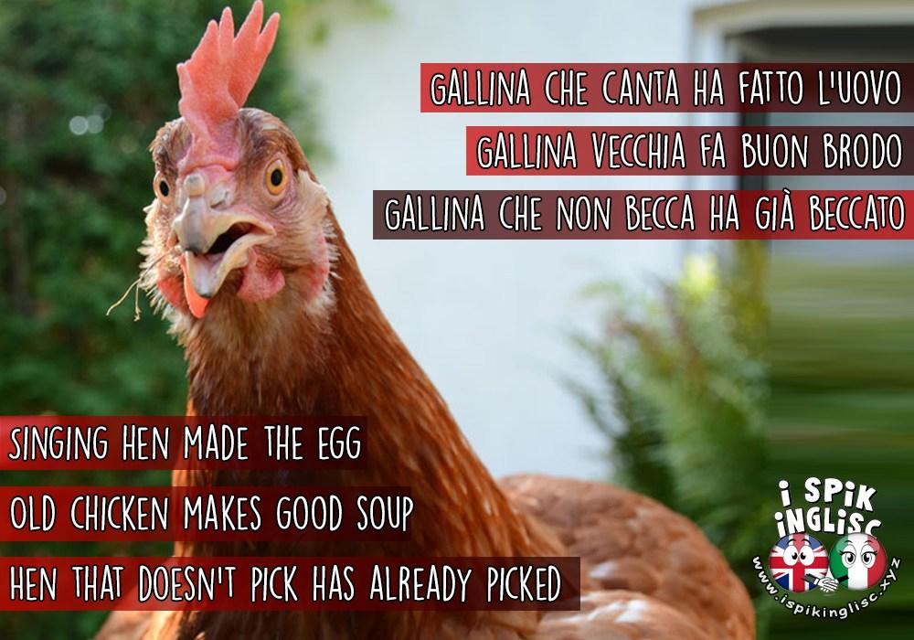 saggezza gallinara... - ispikingisc.xyz